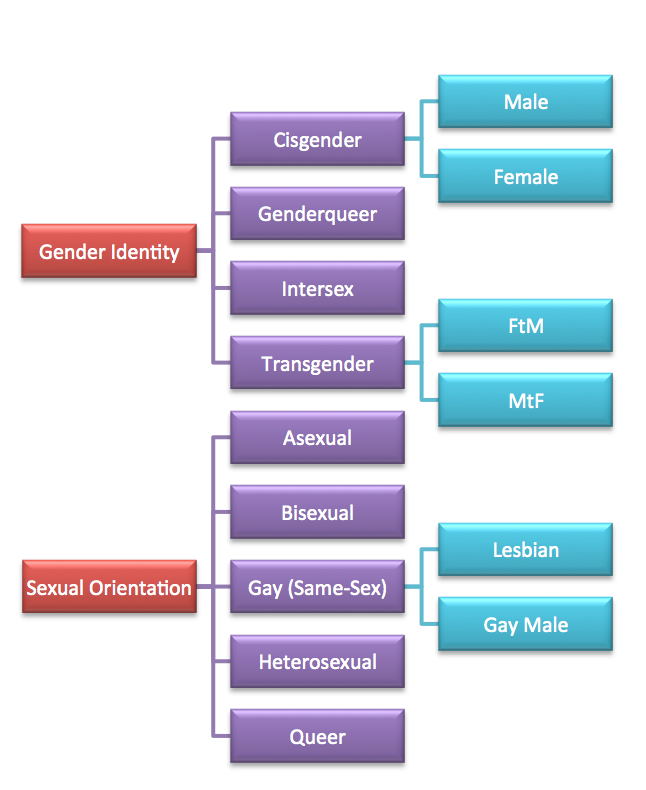 OrientationAndIdentityChart